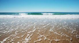 surfers-paradise-beach-6